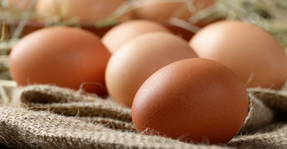 6 Best Egg Recipes of All Time