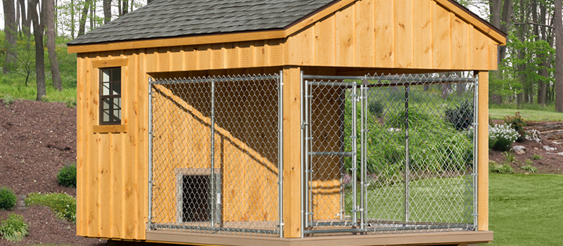 Invest in an outdoor dog kennel