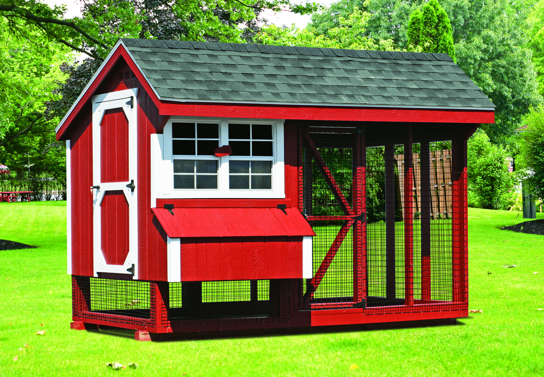 6x10 Comb Chicken Coop with Run and Roosts