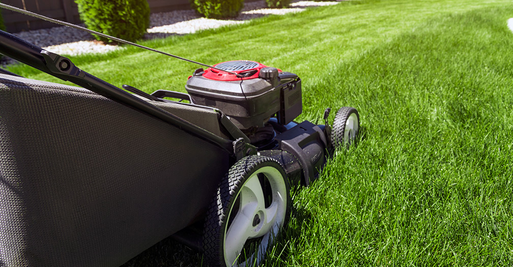 The Best Lawn Mowers: Which is Right for Your Yard