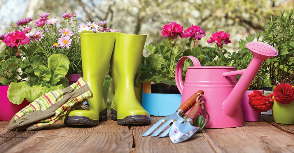 Backyard Garden Shed: The Perfect Gift For Mothers And Wives Who Love Gardening